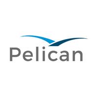 Pelican.ai